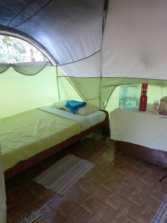 Dolphin Bay Divers Retreat : Inside the tent