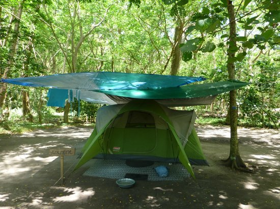 Dolphin Bay Divers Retreat : The tent