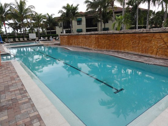 Naples Bay Resort:                   The large heated lap pool.