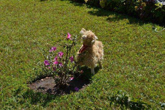 Jardines del Lago: Borreguitos que decoraban los jardines en época navideña