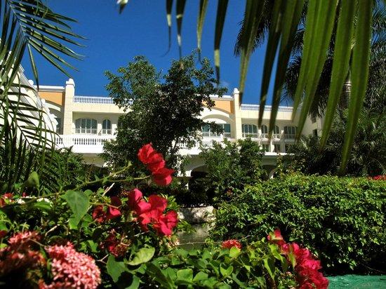 Iberostar Grand Hotel Bavaro:                   Meticulous Landscaping