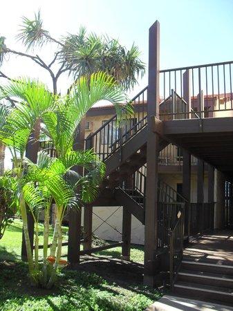 Aston Maui Hill:                   dsdfa