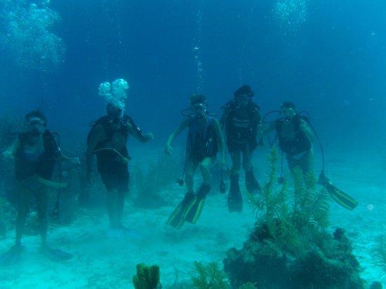 Cayman Marine Lab :                   Underwater Family Photo Shoot