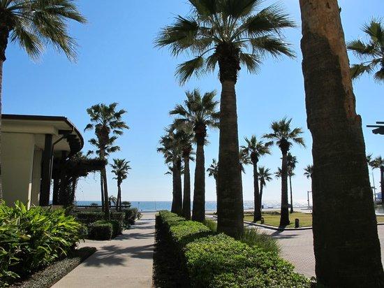 Hotel Galvez & Spa A Wyndham Grand Hotel:                   Looking toward the beach