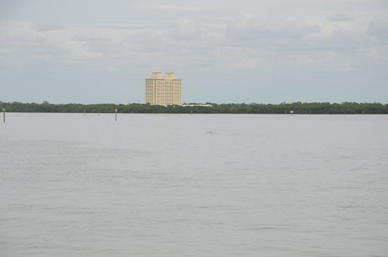 Hyatt Regency Coconut Point Resort & Spa:                   The hotel from the free boat ride to the beach