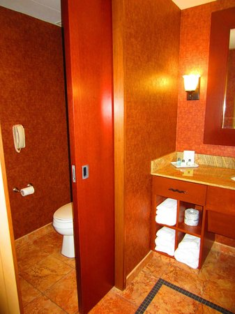 Seneca Allegany Resort & Casino:                   Door separating toilet area