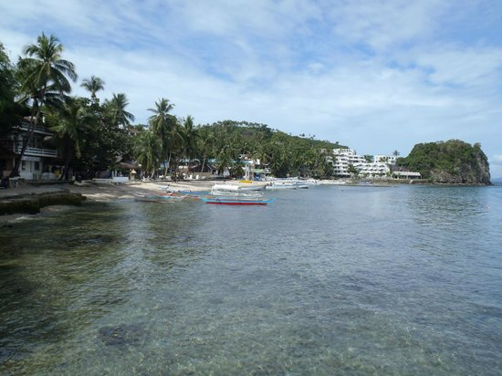 El Galleon Beach Resort & Hotel: view of the property from the dive dock