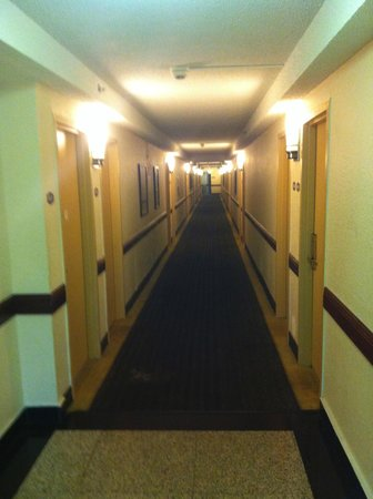 Rodeway Inn Miami: Old carpet but clean, walked on white sox