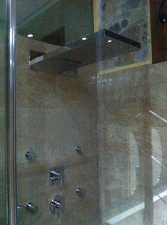 Mas La Casassa: ducha