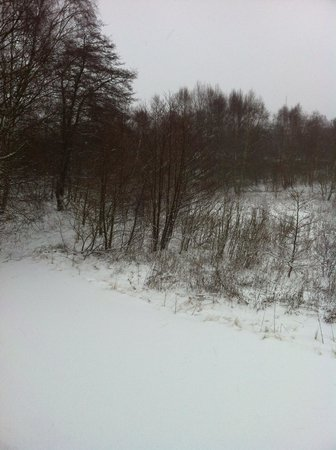 Scandic Silkeborg:                   View from my room