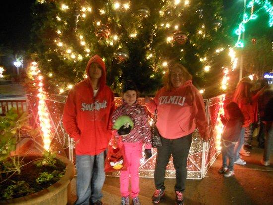 Moody Gardens:                   The Christmas Tree
