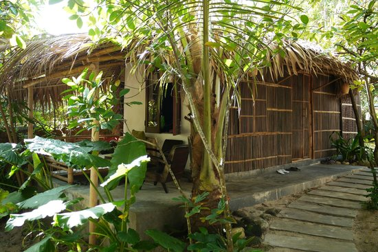 An Bang Seaside Village Homestay: Avocado house