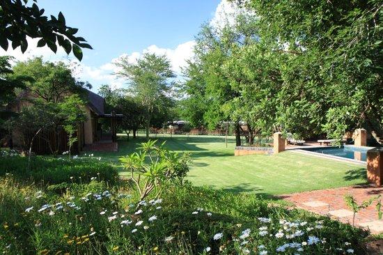 Garten Mit Pool garten mit pool picture of sherewood lodge pretoria tripadvisor