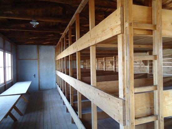 Dachau Concentration Camp Memorial Site:                   CAMAS BELICHES