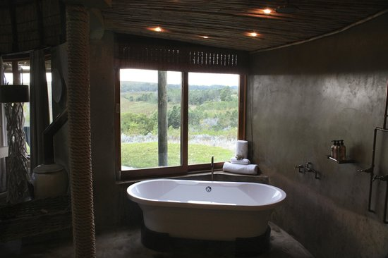 Gondwana Game Reserve:                   Looking out over the bath in Kwena hut 1