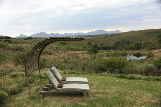 Gondwana Game Reserve:                   Loungers at the pool