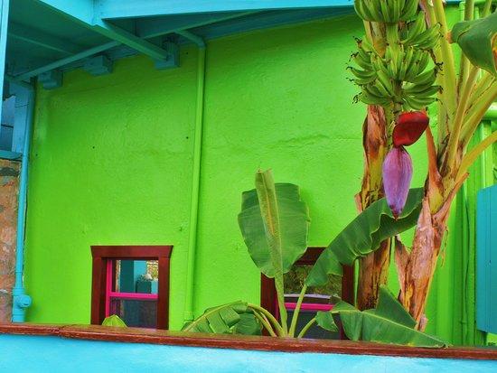 St. John Inn: Caribbean flavor