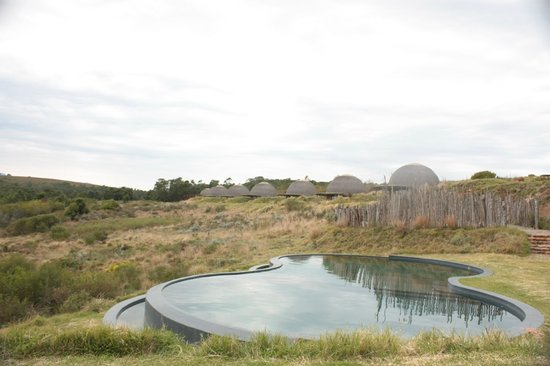 Gondwana Game Reserve:                   Overlooking pool