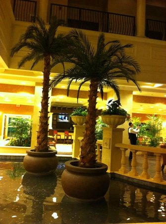 Embassy Suites by Hilton Tampa - Downtown Convention Center: Palm trees in the lobby