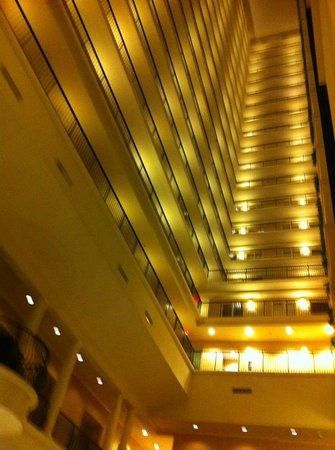 Embassy Suites by Hilton Tampa - Downtown Convention Center: Looking straight up from the lobby