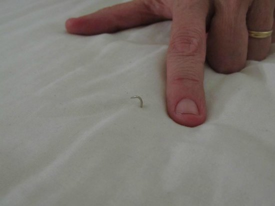 ‪هيلتون جاردن إن أوستن داون تاون:                   Pin protruding from mattress pad