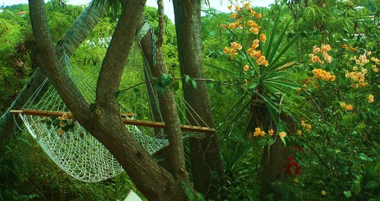 St. John Inn: Hammock from one of the suites porch