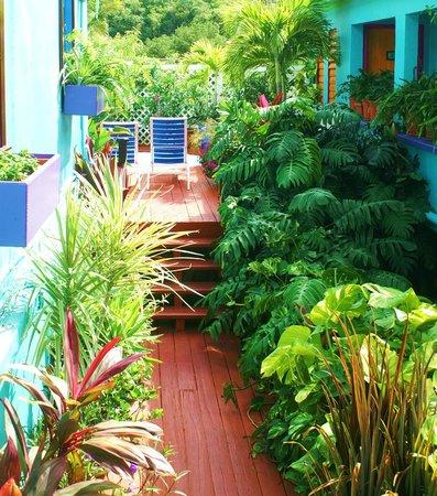 St. John Inn: Garden walk