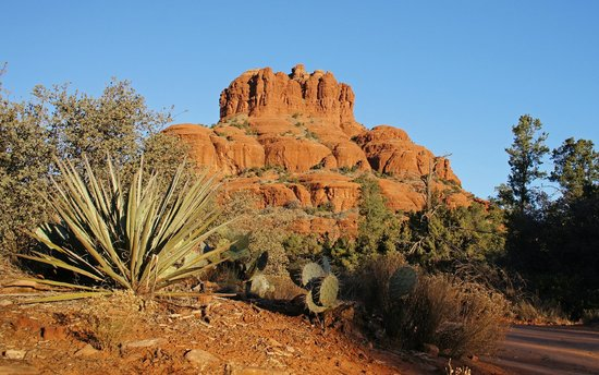 The Red Agave Resort: Bell Rock - just out the back from the Resort - direct walking trails!