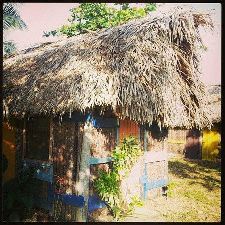 Palmento Grove Cultural & Fishing Lodge:                   Home for the night!