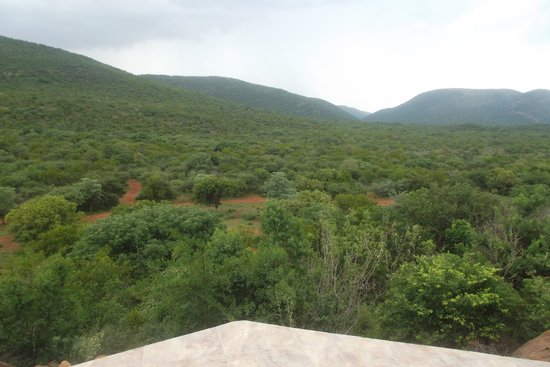 Soul of Africa Lodge : View from Room