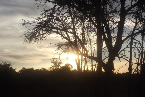 Soul of Africa Lodge : Sunset