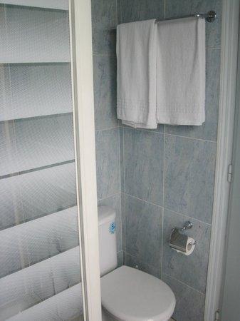 Hotel du Quai-Voltaire: bath/shower, toliet