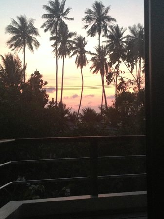 Samahita Retreat:                   Dawn vision - the first thing I saw when opening my eyes