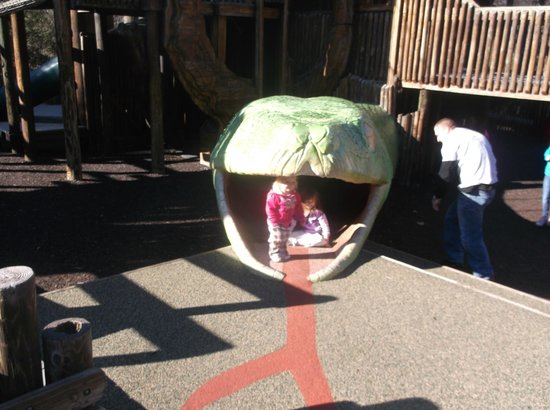 Nashville Zoo: my grandkids in the giant snake on the playground