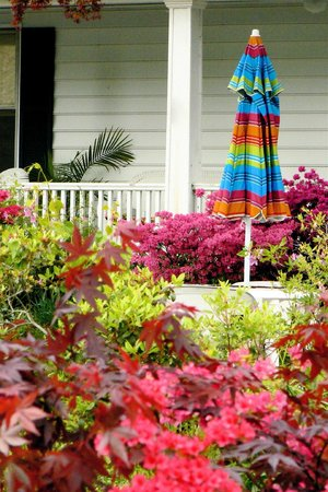 Price's Seafood: Colorful yard during summer visit