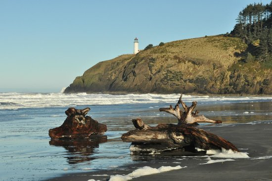 Cape Disappointment State Park:                   North Head Lighthouse from Cape D Campground Beach
