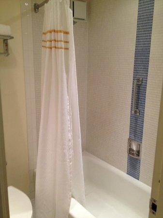 Washington Plaza:                   Bathroom