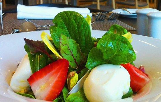 Atton Vitacura: Ensalada de Queso Fresco Citadino Restaurant