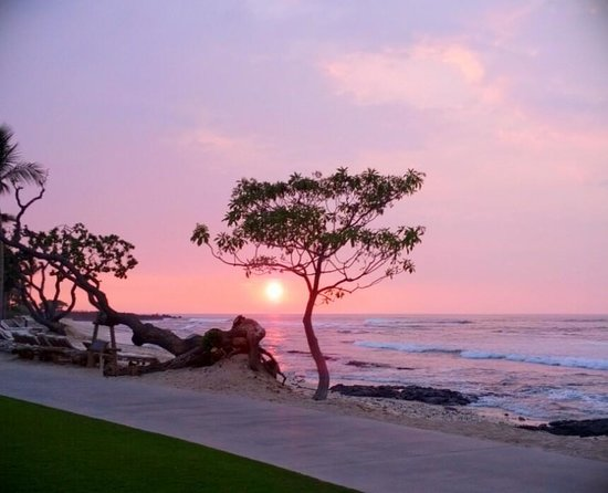 Four Seasons Resort Hualalai:                   Sunset from Beach Tree Lounge