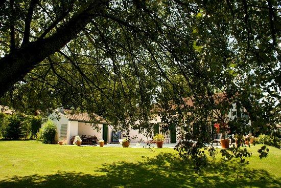 Chambre d'Hôtes Iduzkian : Vue sur la terasse du jardin