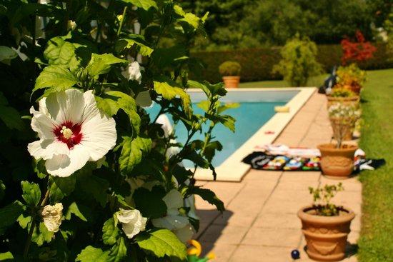 Chambre d'Hôtes Iduzkian: La piscine