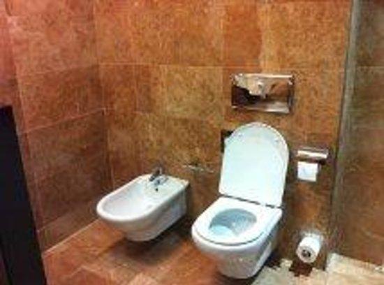 โรงแรมแอตาเอเทรียมพาเลส:                   bathroom