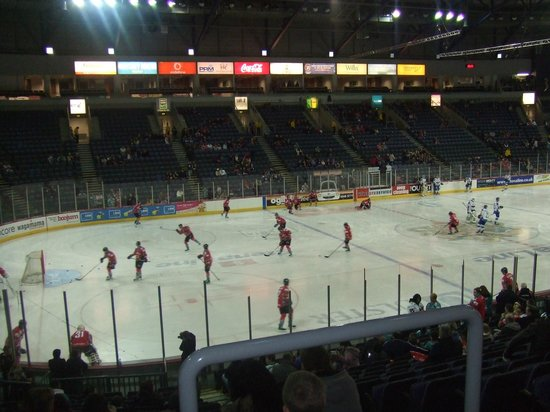 The SSE Arena:                   Belfast Giants vs Hull Stingrays-section U
