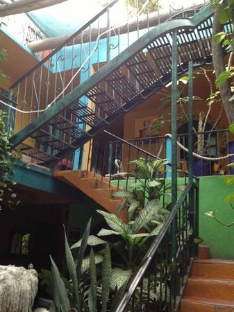 Cabo Inn Hotel:                   Staircase to Rooftop Common Room