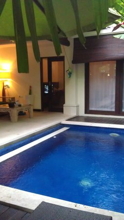 Kamuela Villas and Suite Sanur:                                     pool