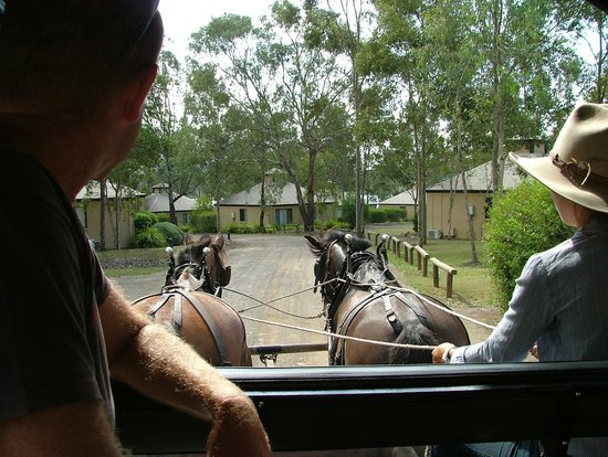 Leisure Inn Pokolbin Hill: Returning to Leisure Inn in a carriage