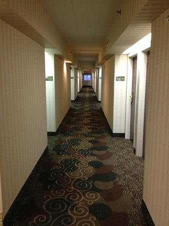 SpringHill Suites Washington: Hall