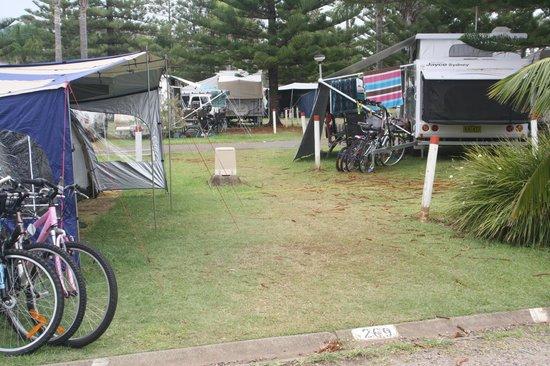 Sundowner Breakwall Tourist Park: Walk way through campsite