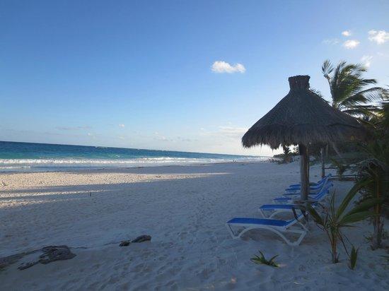 Posada Ecologica Dos Ceibas:                   Je hebt het strand voor jou alleen
