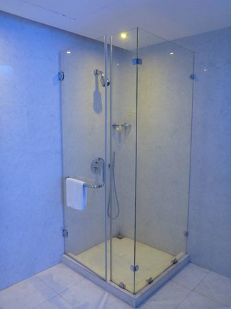 Hani Suites & Spa:                   stand shower
